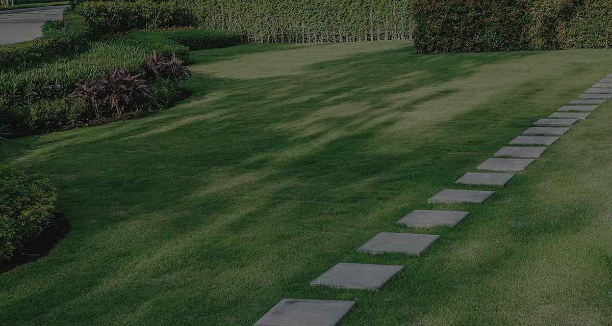 Garden Design - Harrogate Garden Design, Lisa Norton ...